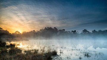 Nebliger Sonnenaufgang auf der Kampina von Ruud Engels