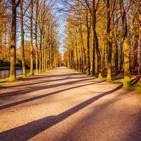 Landgoed Groeneveld van Jaap Mulder