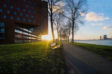 les rayons du soleil à Rotterdam sur Kristof Ven