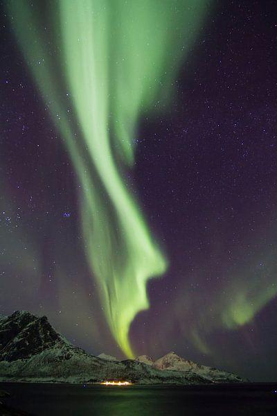 Northern Lights, Grøtfjord van Freek van den Driesschen