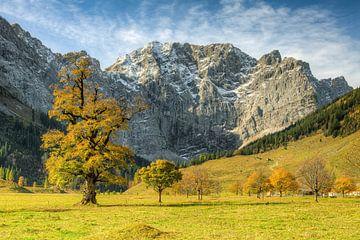 Grote ahorngrond in Oostenrijk in de herfst van Michael Valjak