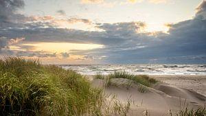 Duinen van Petten aan Zee (Noordzee) van