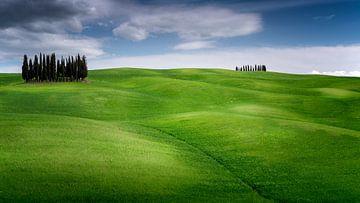 De groene heuvel van Toscane in de lente van Rene Siebring