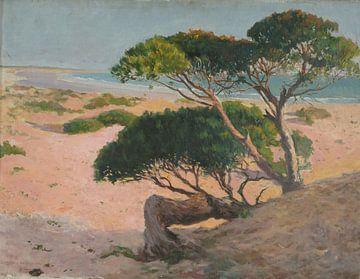 Felipe Abarzuza-Der Strand von Barrosa