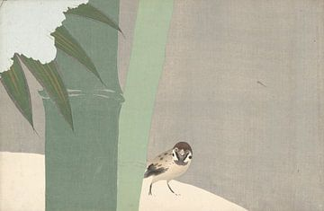Bambus im Schnee von Kamisaka Sekka, 1909