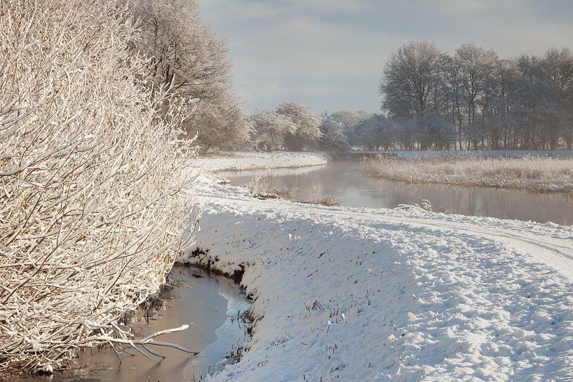 Drentsche Aa in de winter van Karla Leeftink