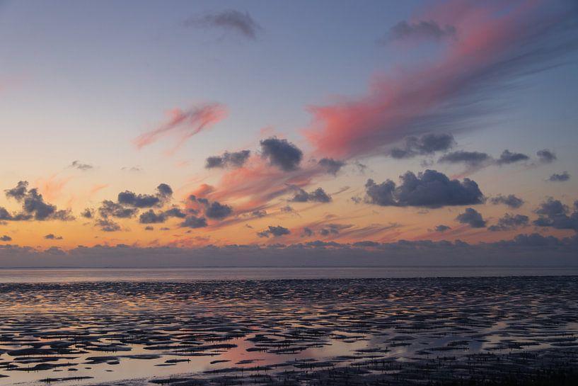 Waddenzee bij Westhoek van Meindert van Dijk