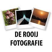 Mark De Rooij profielfoto