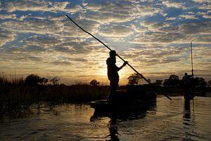 Okavangodelta van