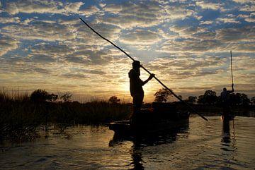 Okavangodelta sur Paul Riedstra
