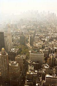 Manhattan gezien van Empire State Building kleur van