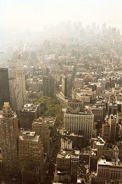 Manhattan gezien van Empire State Building kleur
