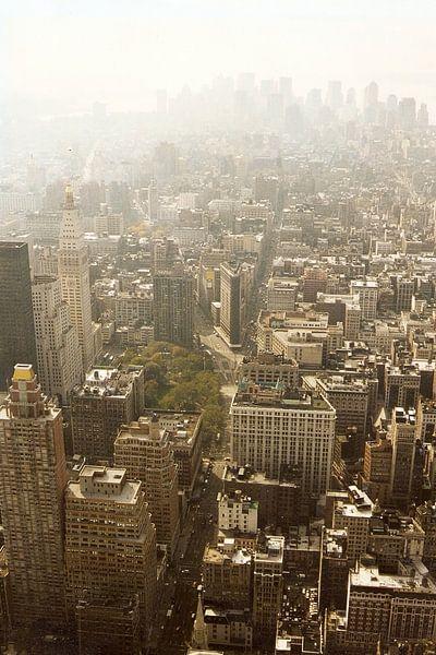 Manhattan gezien van Empire State Building kleur van David Berkhoff