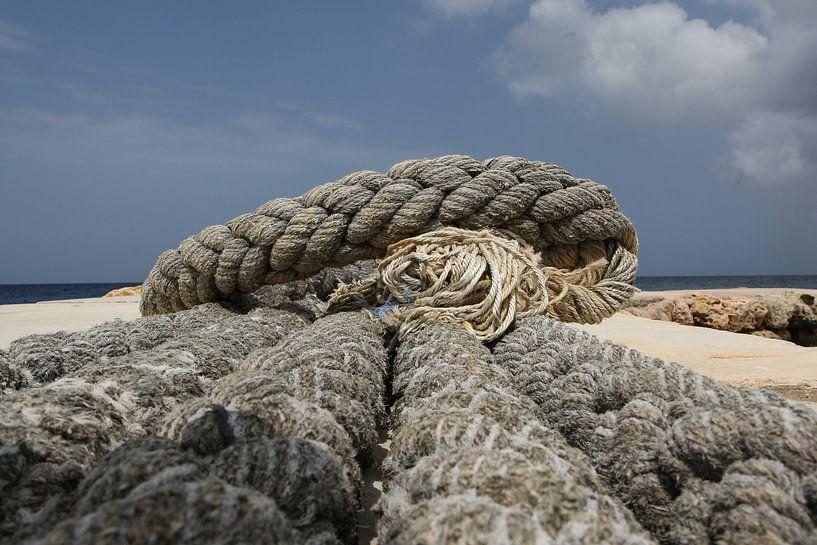touw op de kade van Frans Versteden