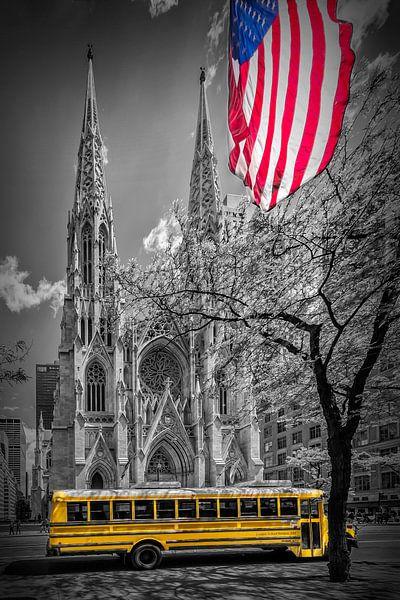 NEW YORK CITY St. Patrick's Cathedral van Melanie Viola