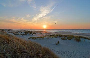 Strand van Zeeland von Love Zeeland