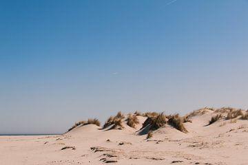Warme duinen van Merel van Luijk