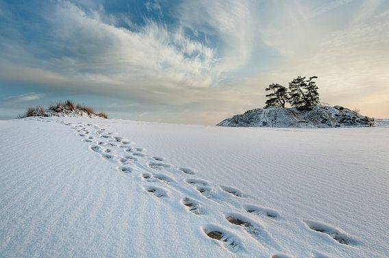Winter. van Piet Haaksma