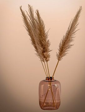 Stilleben Vase mit Federn von Marjolein van Middelkoop