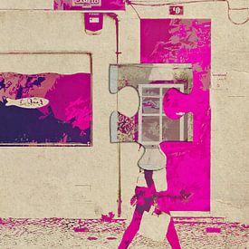 Het passeren van de roze deur van Gabi Hampe
