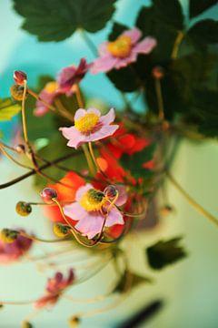 Japanse anemoon - verstrengeling bloem en knop van Mariska van Vondelen