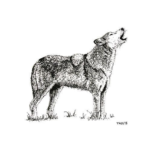 Eenzame wolf van