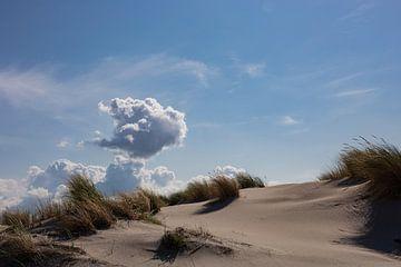 Duinen in de wind van Ulbe Spaans