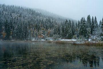 Wo der Regen zu Schnee wird von Samantha van Leeuwen