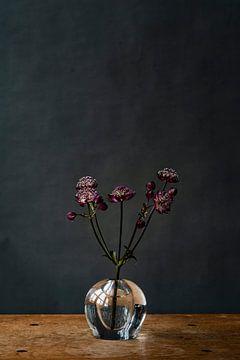 Foto | Lila Blumen in Vase | Botanisch | Modernes Stillleben von Jenneke Boeijink