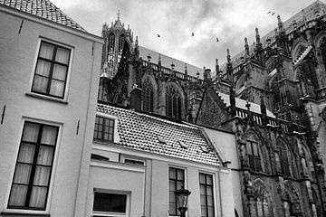 Besneeuwde Dom Utrecht met vogels van Patrick van den Hurk
