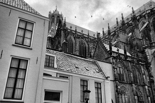 Besneeuwde Dom Utrecht met vogels von Patrick van den Hurk