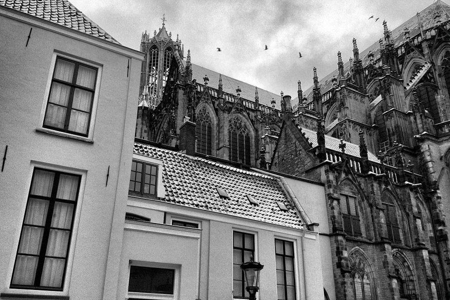 Besneeuwde Dom Utrecht met vogels