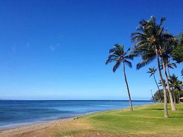 Beach in Olowalu, Maui, Hawaii van Martina Dormann