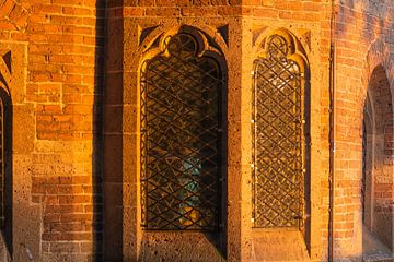 fenêtres dorées sur Tania Perneel