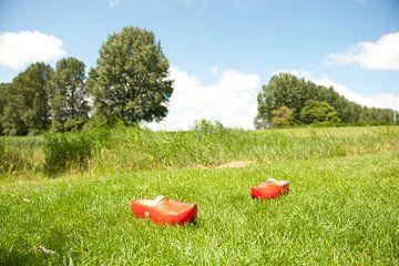 Twee Klompen in het Gras von