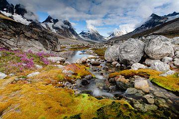 Gletscherbach in Grönland von Wilco & Casper