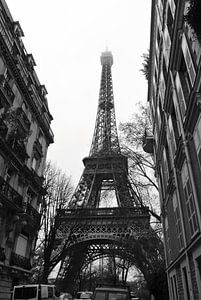 Paris I von lieke hermanides