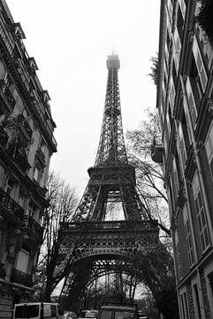 Paris I sur lieke hermanides