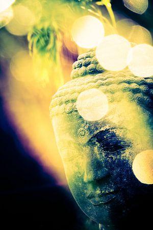 Kopf eines Buddha in der Morgensonne (Bokeh)
