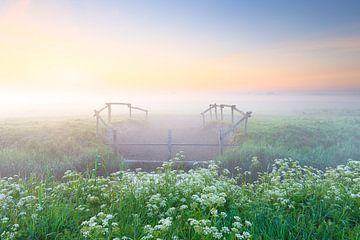 Op een koele ochtend in mei komt langzaam de zon op in het oosten boven het Nationaal Park Lauwersoo van Bas Meelker