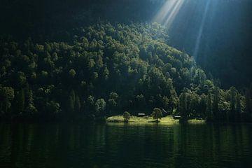 Das letzte Sonnenlicht von Bram Busink