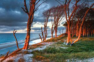 Sonnenuntergang am Weststrand auf dem Darß von Sascha Kilmer