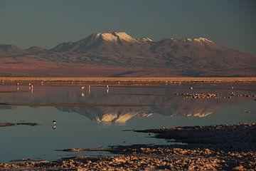 Spiegelung der Andengipfel in einem mit Wasser bedeckten Salzsee in Chile von A. Hendriks