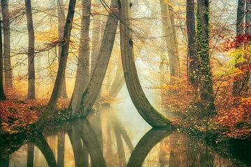 Frühlingsfliegen Landschaft von Lars van de Goor