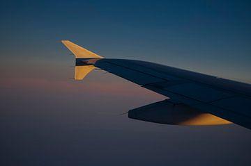 Wing van Rob Bruijn