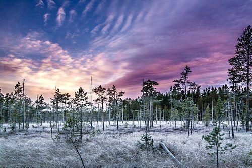 Kleurrijke zonsondergang in midden Zweden van