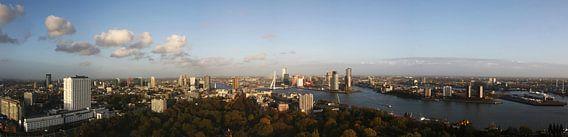 Rotterdam van Thijs Schouten