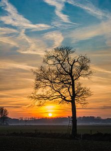 Zonsondergang silhouette van