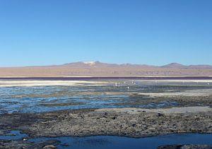 'Water en zout', Bolivia