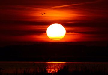 zonsondergang van Dennis Schaefer